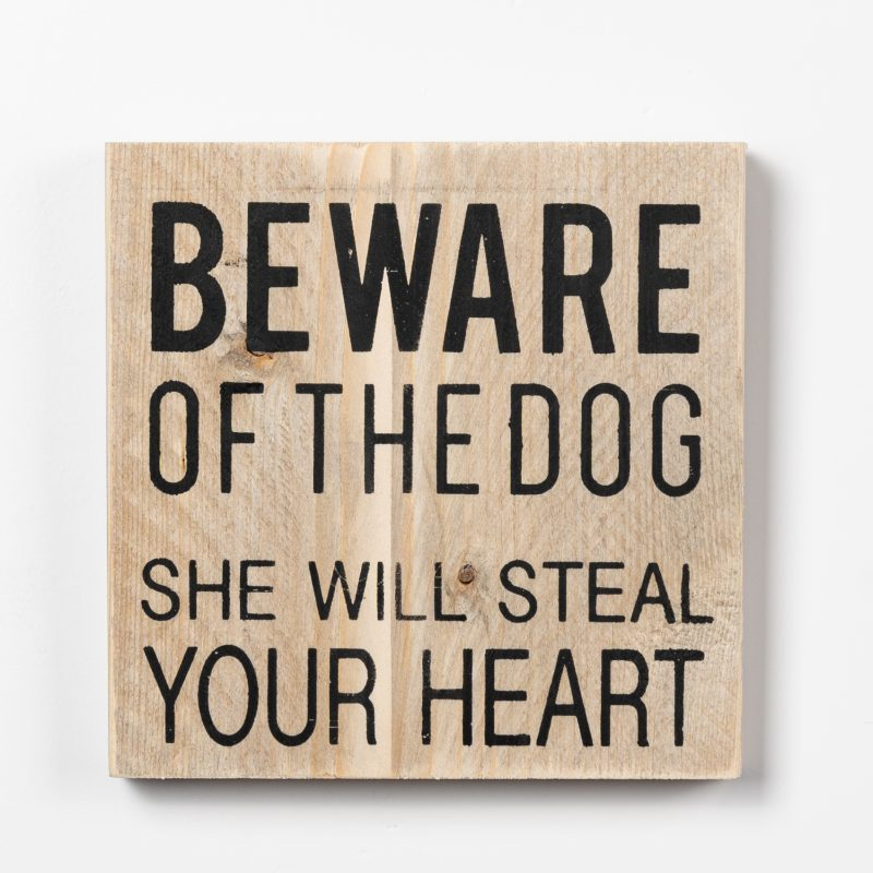 Tekstbord - The dog (v)